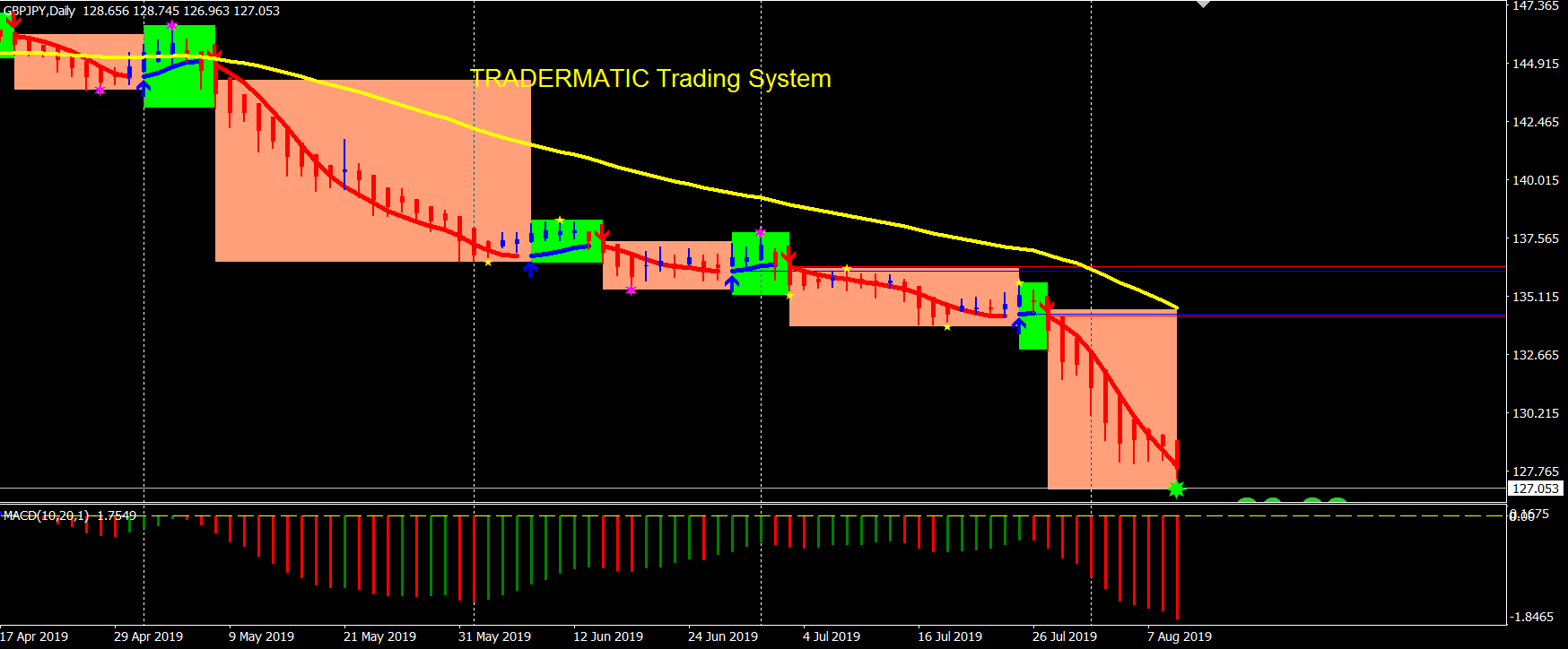 Forex Trading Software Making More Pips with Tradermatic